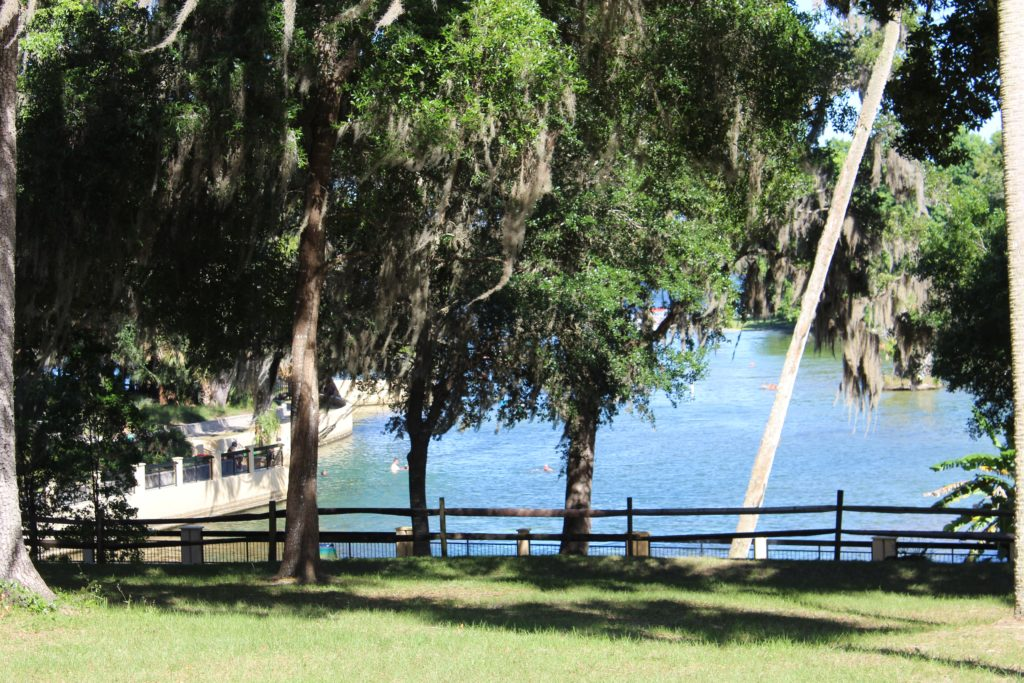 view of Salt Springs swimming area from restrooms